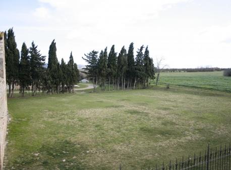 Prado 1000M2