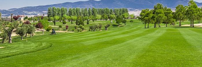 Hotel-Balneario-Alhama-de-Aragon-golf-700-234