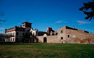 Cortal Avinyó: actividades en sus zonas verdes
